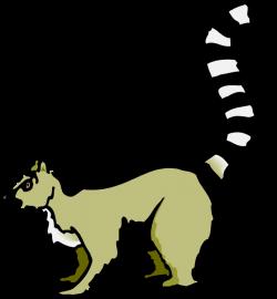 Tail clipart lemur