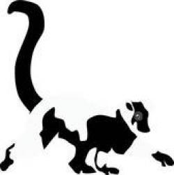 Lemur clipart maki