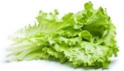Salad clipart sayur