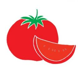 Cabbage clipart tomato slice