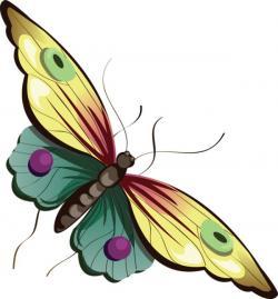 Papillon clipart mariposa