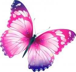 Papillon clipart pretty butterfly