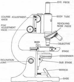 Light Microscopy clipart microscope part