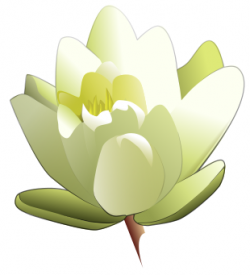 Oriental clipart water lily