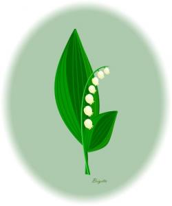 Lily Of The Valley clipart small
