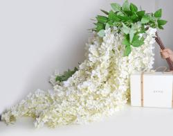 Lily Of The Valley clipart wisteria