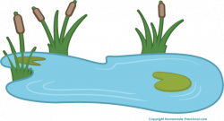 Water Lily clipart pond reed