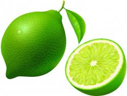 Lime clipart green fruit