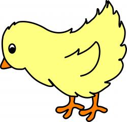 Chick clipart graphic