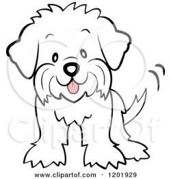 Maltese clipart fluffy dog