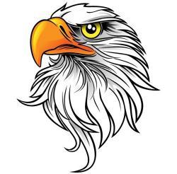 Line Art clipart eagle