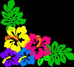 Wallpaper clipart hibiscus flower
