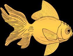 Fins clipart goldfish