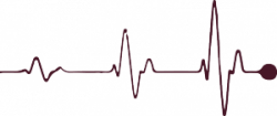 Line clipart heart rate