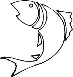 Drawn fishing aquarium fish
