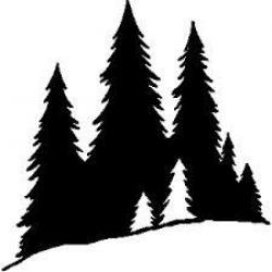 Dark Wood clipart pine forest
