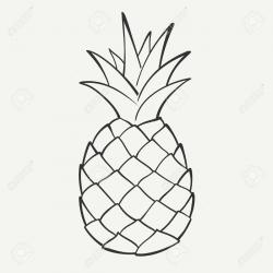 Amd clipart pineapple