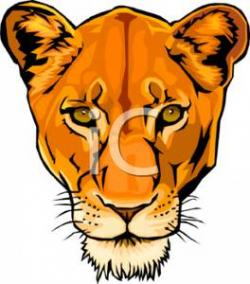 Head clipart lioness