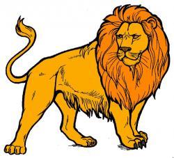 Lioness clipart fierce lion