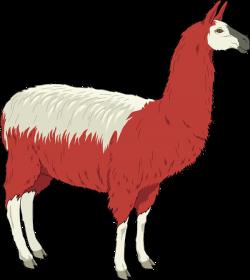 Lama clipart fur