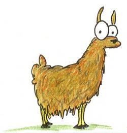 Drawn llama cartoon