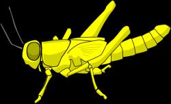 Grasshopper clipart plague locust