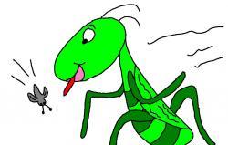 Grasshopper clipart sad
