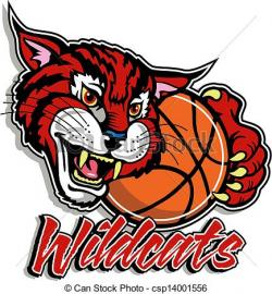 Wildcat clipart drawing