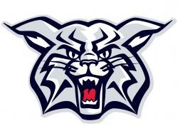 Wildcat clipart arizona wildcat