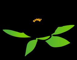 Vase clipart lotus flower