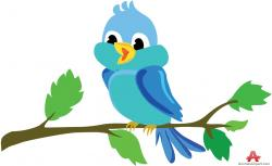 Bluebird clipart beautiful bird