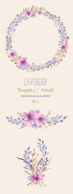 Drawn lavender painted