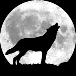Werewolf clipart full moon