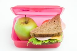 Sandwich clipart packed lunch