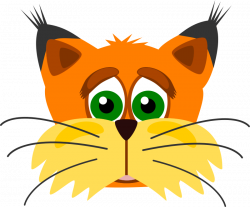 Drawn lynx fox face