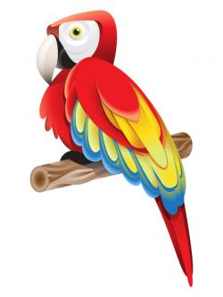 Macaw clipart cartoon