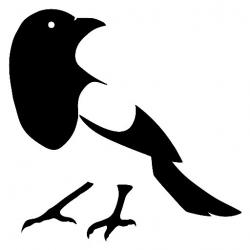 Magpie clipart english