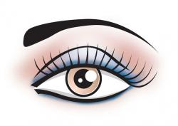 Makeup clipart eye makeup
