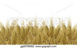 Malt clipart oat plant