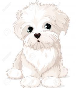 Puppy clipart maltese