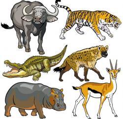 Africa clipart fauna