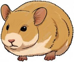 Hamster clipart mammal