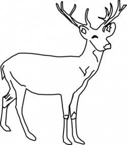 Herbivorous clipart black and white