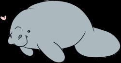 Dugong clipart