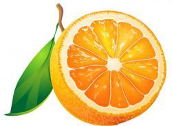 Grapefruit clipart sour food
