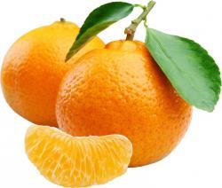 Mandarin clipart diet