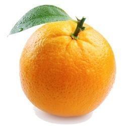 Mandarin clipart kinnow
