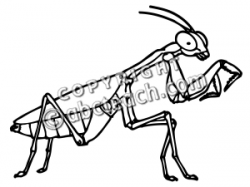 Praying Mantis clipart black and white