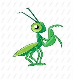 Mantis clipart cartoon