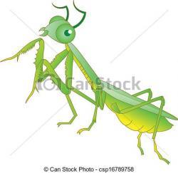 Mantis clipart grasshopper